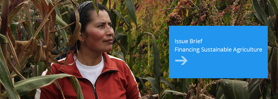 Financing Sustainable Agriculture Issue Brief