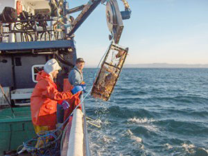 unsustainable-practices-overfishing