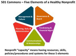 5 elements of a healthy nonprofit graphic