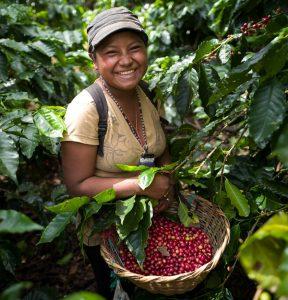 Woman harvesting coffee in Nicaragua