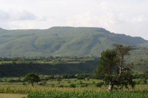 Lush, regrown hillside in Humbo, Ethiopia, 2007. Photo: World Vision.