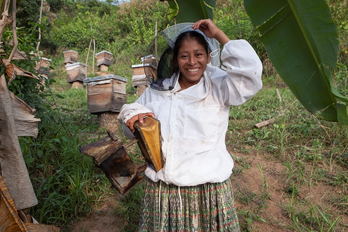 Estela Botzoc Tiul prepares to gather honey