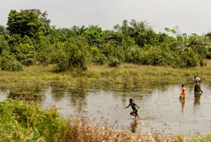 Wetland area in Liberia