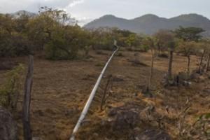 COCEPRADIL Honduras pipeline
