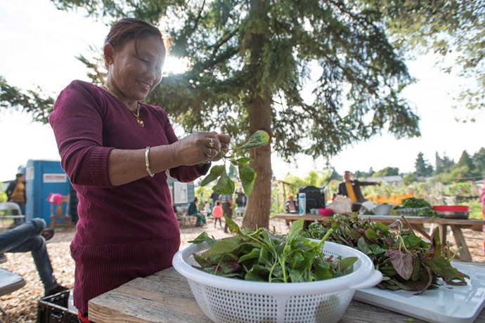 Woman participating in IRC's New Roots community garden program