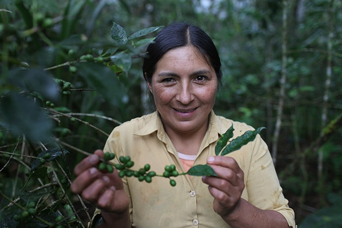 Maria Elva Correa Torres, 40, shows her coffee plants in Cajamarca, Peru