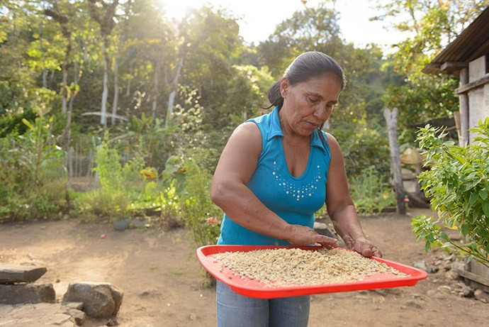 Woman with coffee beans on farm.